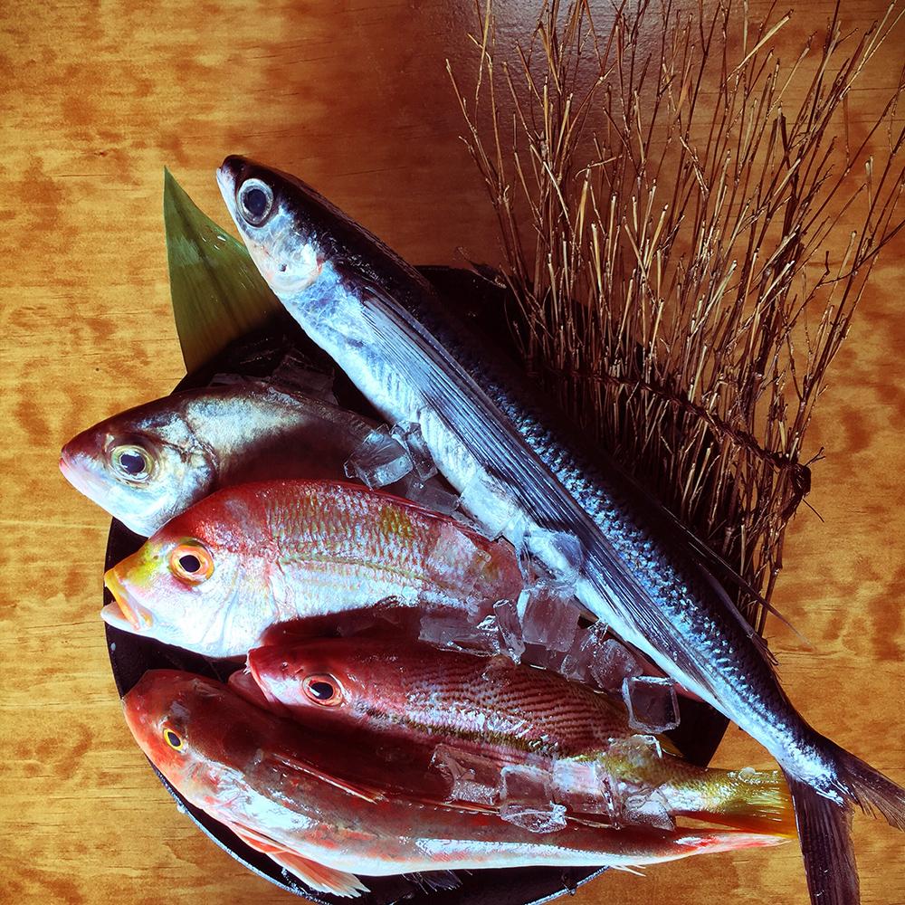 Kemuri Japanese Baru - Fresh fish from Japan